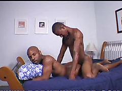 Kaven & Sexy Veteran