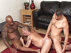 Tony Serrano, Adam Mansfield & Tony London