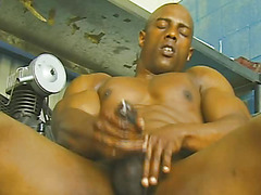 Black Muscle Machine 2
