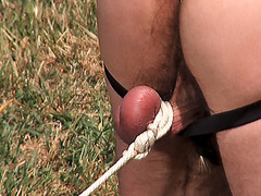 Stud Ranch Hung N' Strung
