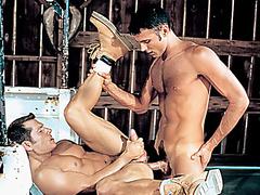 Nino Bacci, Brandon Warner