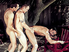 Rod Barry, Marco Paris, Vince Ditonno